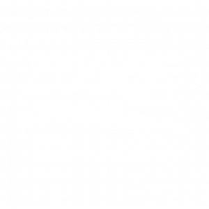 0015_barracuda-partner-zoggs